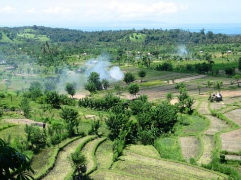 Rubbish Burning in Bali