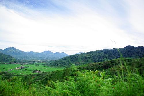 Gayo Highlands
