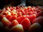 Strawberries from Bandung, West Java
